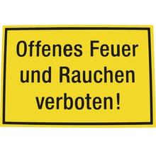 Panneau d''interdiction Interdiction de fumer et de faire du feu 200x300 mm-thumb-0