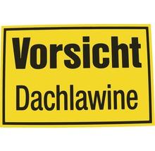 Panneau «Attention aux avalanches de toit» 200x300 mm-thumb-0