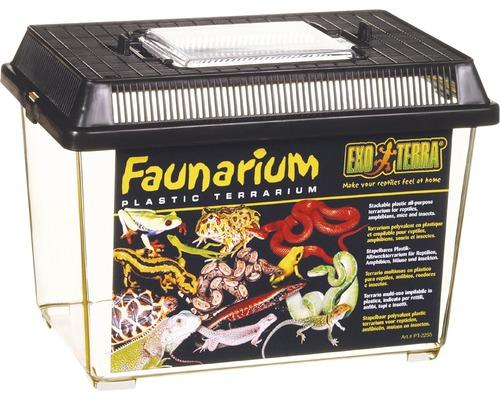 Accessoires pour terrarium
