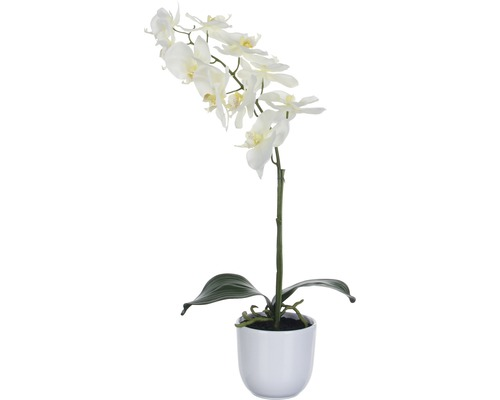 Fleur artificielle Orchidée H 60 cm, blanc
