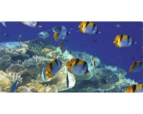 Panneau mural salle de bains mySPOTTI aqua Immersion 90x45 cm