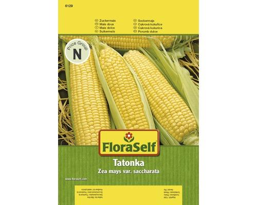Maïs doux Tatonka semences de légumes FloraSelf®