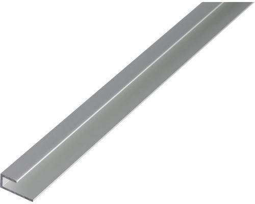 Profilé de finition des bords en aluminium 20x9x1.5 mm, 1 m