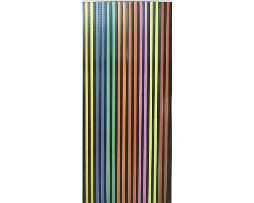 Rideau de porte Rayures bariolé 90x200 cm