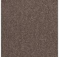 Dalle de moquette Intrigo brun 50x50 cm