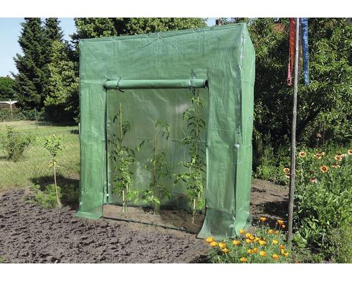 Serre pour tomates 195x60cm vert
