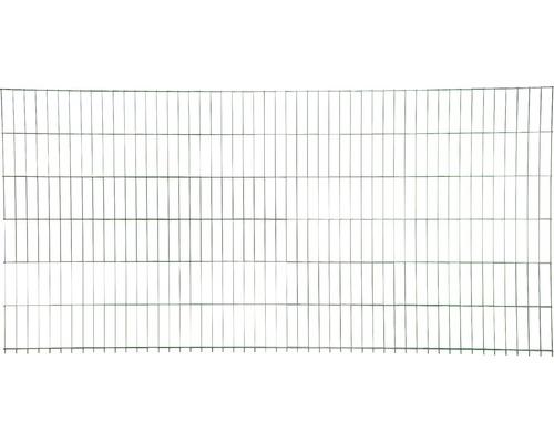 Clôture à grillage double 251x163 cm, vert