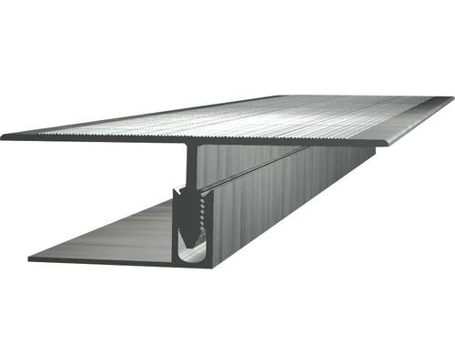Übergangsprofil Aluminium für Beläge 2500x60x22,5 mm