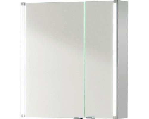 Spiegelschrank basano Salenta 60x67x16,5 cm grau 2 türig IP 20