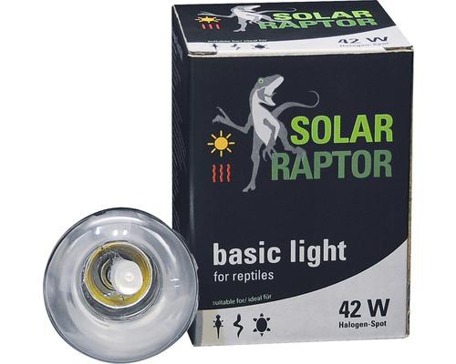 Spot halogène Econlux SolarRaptor 42 W