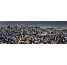 Panneau décoratif The City 48x138 cm-thumb-0