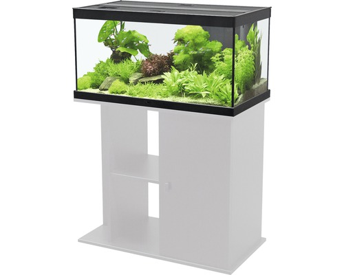 aquarium aquatlantis style led 80x35 cm sans meuble noir hornbach luxembourg. Black Bedroom Furniture Sets. Home Design Ideas