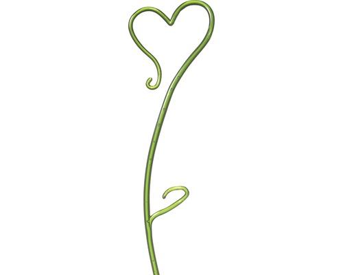 Tige à orchidées Soendgen H 55 cm vert-0