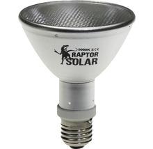 Projecteur UV Econlux SolarRaptor 50 W PAR30-thumb-0