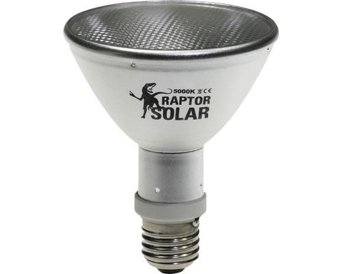 Projecteur UV Econlux SolarRaptor 50 W PAR30