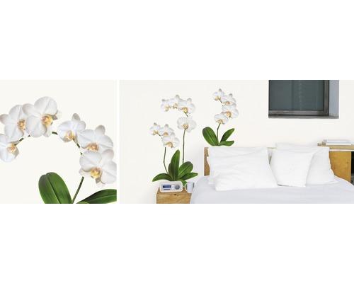 Sticker mural orchidée blanche 50 x 70 cm