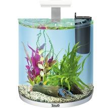Aquarium Tetra ExplorerLine LED 30 litres sans armoire basse, blanc-thumb-0