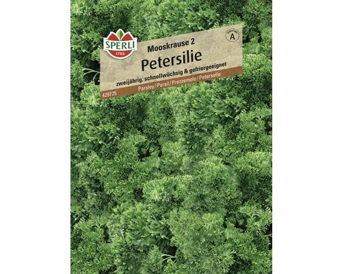 Semences de fines herbes, persil ''Mooskrause 2'' Sperli-0