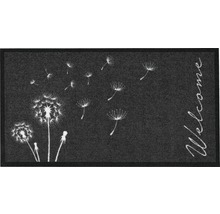 Paillasson Création Delion anthracite 66x120 cm-thumb-0