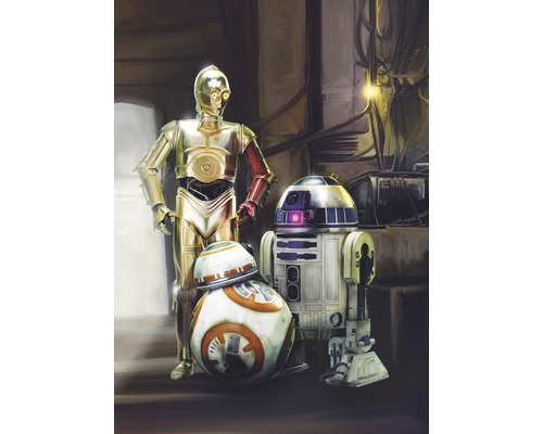 Papier Peint Photo Disney Edition 2 Star Wars 3 Droids 184x254 Cm