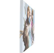 Tableau sur toile Frozen Reine des neiges Group 50x70 cm-thumb-2