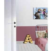 Tableau sur toile Frozen Reine des neiges Group 50x70 cm-thumb-1