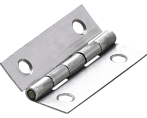 Charnière étroite, 50x30 mm, acier inoxydable mat, 10 pièces-0