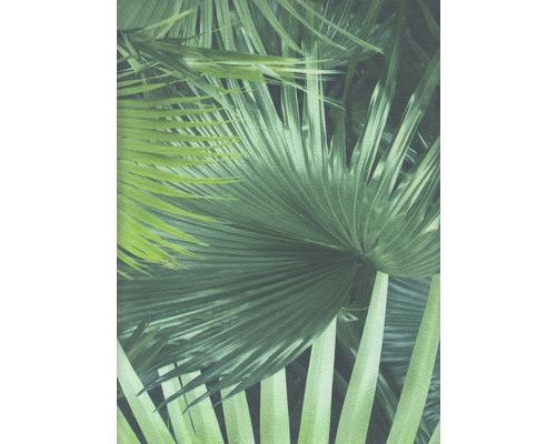 Papier peint intissé 524901 Crispy Paper feuilles de palmier, vert-0