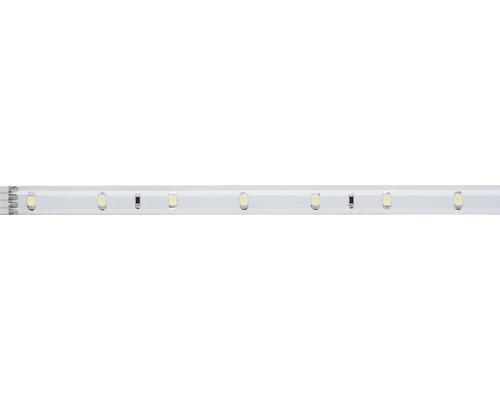 Bande YourLED 97 cm 3W 273 lm 6000 K blanc naturel 39 LED revêtu 12V