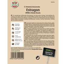 Estragon ''Petit dragon'' Sperli semence de fines herbes-thumb-1