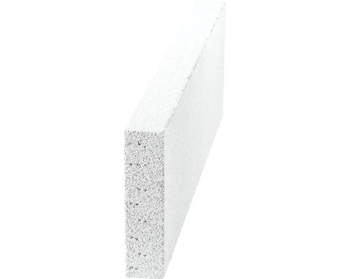 Brique en béton cellulaire 600x50x199 mm