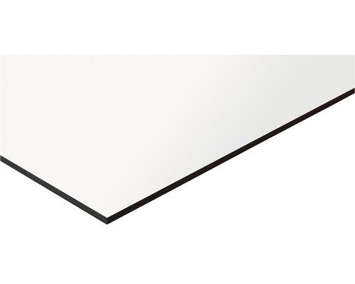 Panneau compact blanc dimensions fixes 1200x600x6mm