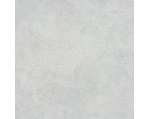 Carrelage de sol gr s c rame fin eco bianco 31x31 cm for Carrelage hornbach