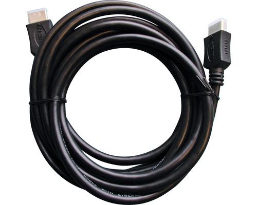 Câble High-Speed-HDMI 2x fiches HDMI Type A 3m noir