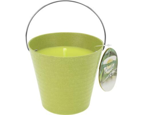Citronnelle dans un seau Ø12,5 H11,5cm vert
