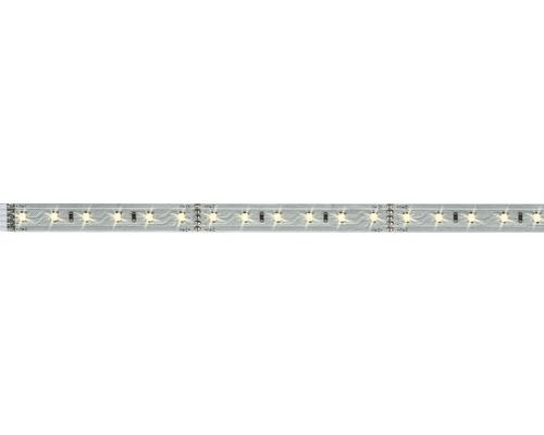 Strip MaxLED 500 1,0 m 550 lm 2700 K blanc chaud 72 LED non revêtu convient comme extension au set de base 24V convient au Smart Home après extension