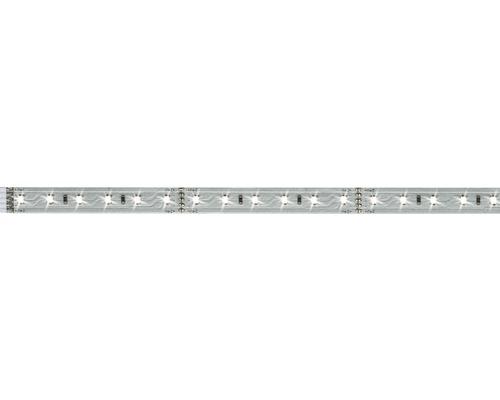Strip MaxLED 500 1,0 m 550 lm 6500 K blanc naturel 72 LED non-revêtu convient comme extension au set de base 24V convient au Smart Home après extension