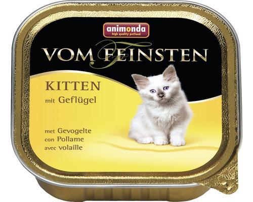 Nourriture pour chats humide, animonda de la qualité la plus fine Kitten volaille 100g