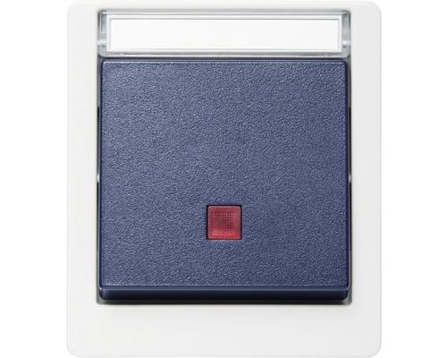 Interrupteur de commande en saillie pour pièce humide verticale gris/bleu avec champ inscriptible ROTH LANGE 56815
