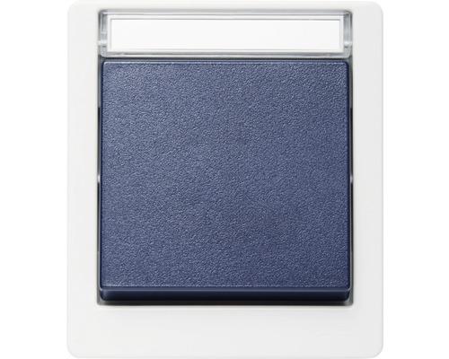 Interrupteur permutateur ROTH LANGE en saillie pour pièces humides IP55 gris clair/bleu acier