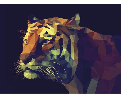 Tableau sur toile Colourful Tiger 84x116 cm
