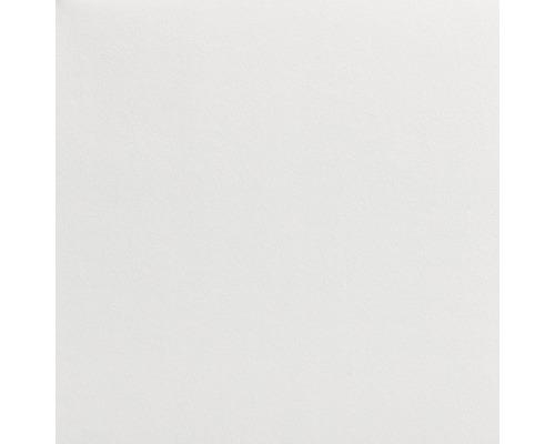 Voile de verre LECO pigmenté blanc 195 g/m² 50 m x 1 m