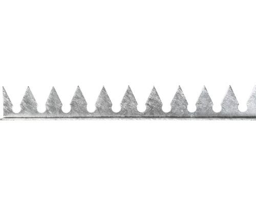 Lisse dentée zinguée à visser, 2m