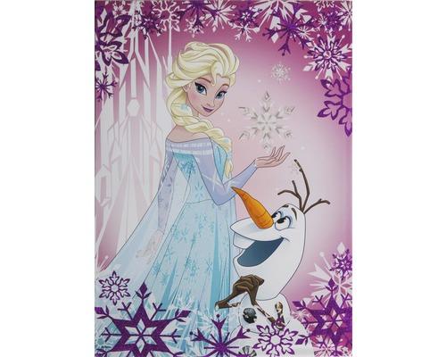 Tableau sur toile Frozen Reine des neiges Elsa & Olaf 50x70 cm