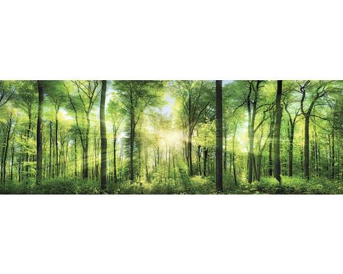 Tableau sur toile Fresh Green 150x50 cm