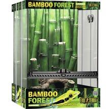 Kit terrarium Exo Terra Bamboo Forest Large 45x45x60cm-thumb-0