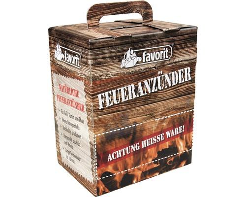 Boîte d''allume-feux favorit 100pièces
