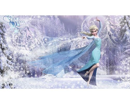 papier peint photo intiss frozen la reine des neiges elsa 416 x 254 cm hornbach luxembourg. Black Bedroom Furniture Sets. Home Design Ideas
