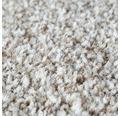 Teppichboden Shag Bravour sand 500 cm breit (Meterware)