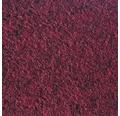 Teppichboden Nadelfilz Invita rot 200 cm breit (Meterware)